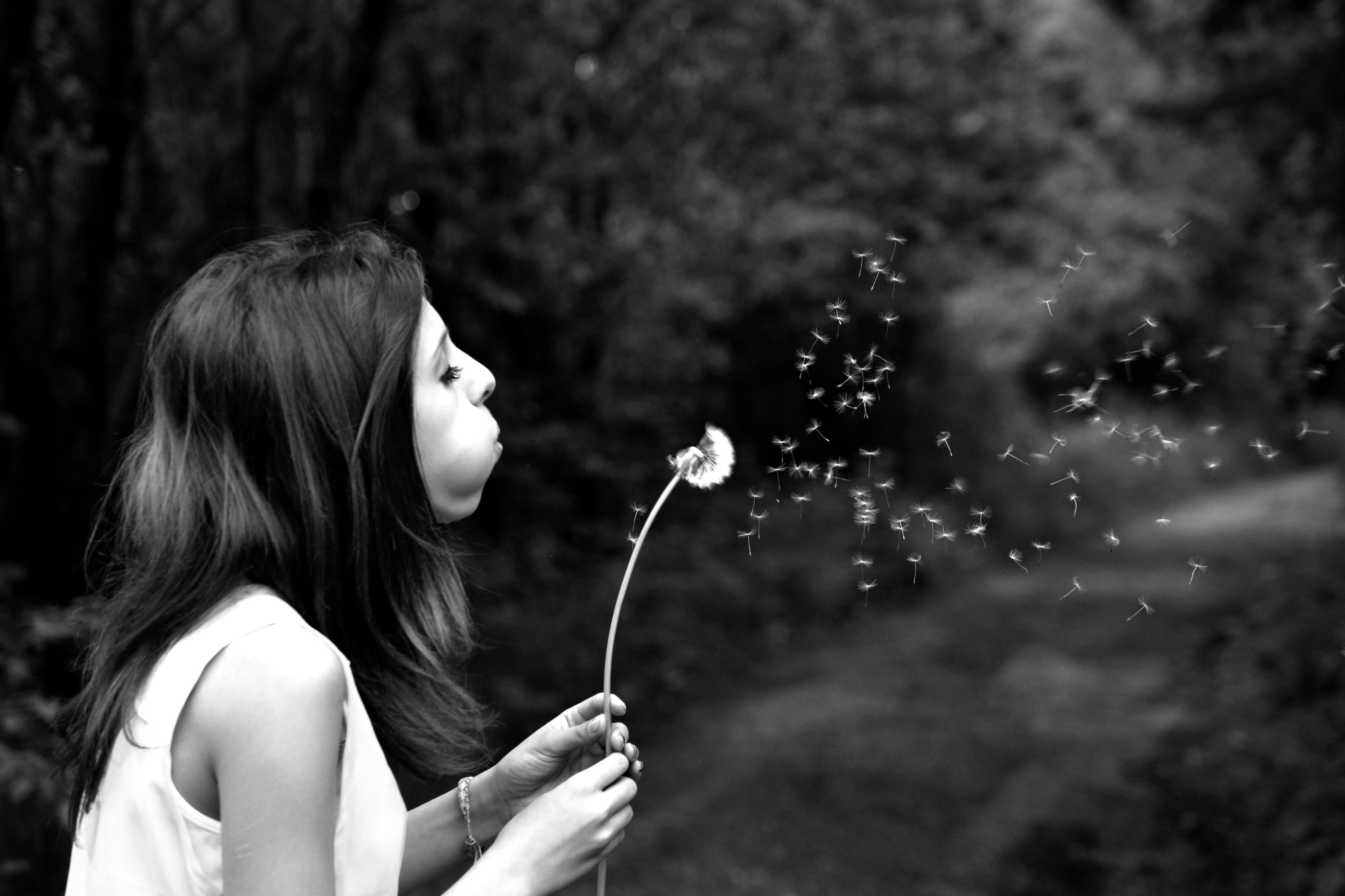 girl-dandelion-wish-summer